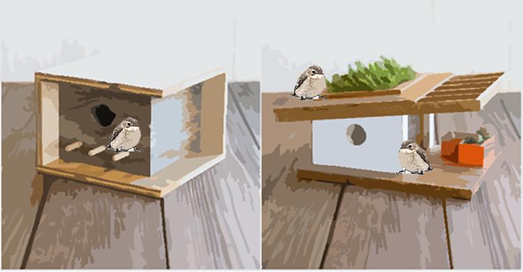 Backgrounds 1519082233 birdhouse design intro birds 72