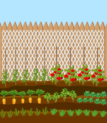 Backgrounds 1524535352 schoolgardens a5%2872%29