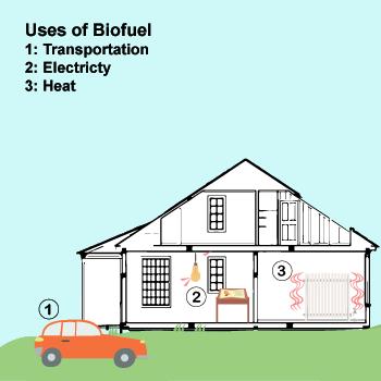 Backgrounds 1569608530 biofuel a4 72dpi 2