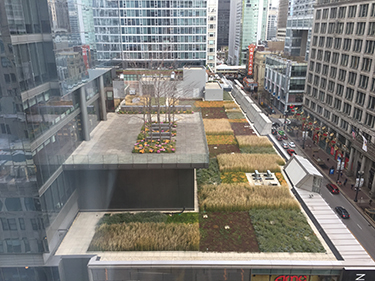 Backgrounds 1615737618 green roofs a3
