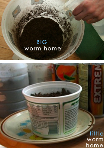 Backgrounds 1423863090 vermiculture activity03