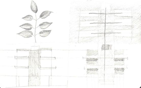 Images 1592335739 nature patterns a4 jmaeng