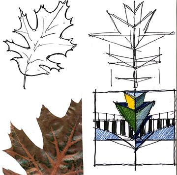 Images 1592336551 nature pattern 5leaf