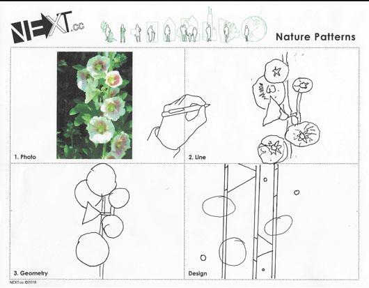 Images 1611007484 naturepattern a4 colinforsyth