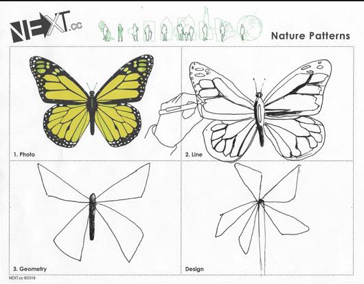 Images 1611007496 naturepattern a4 colinforsyth 2