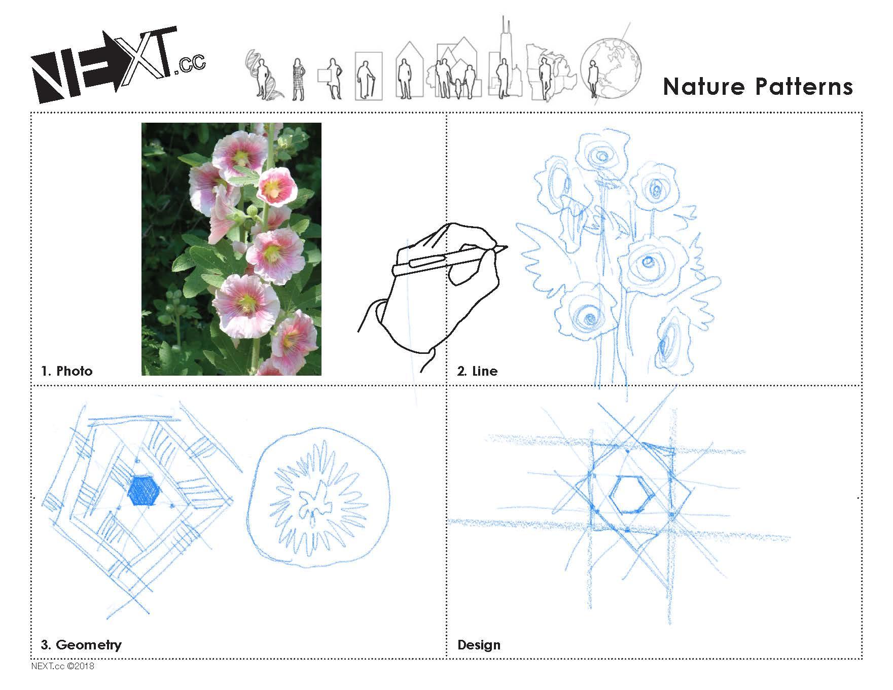 Images 1611013930 naturepattern a4 sarienohara 2