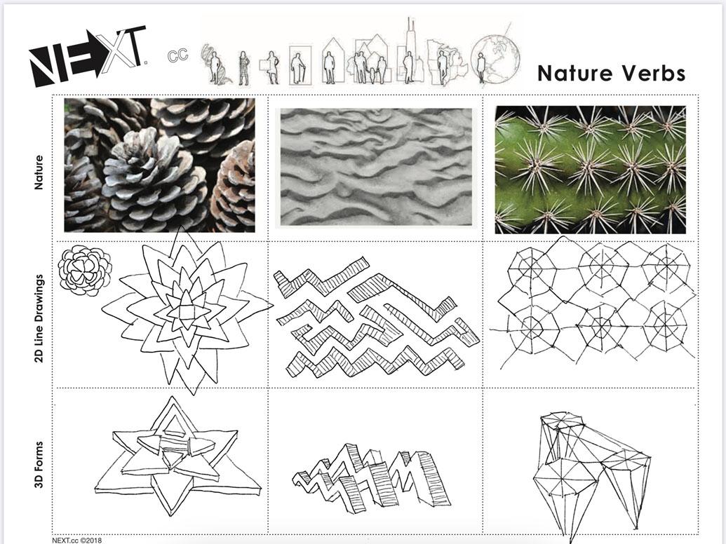 Images 1611014023 naturepattern a6 sarienohara