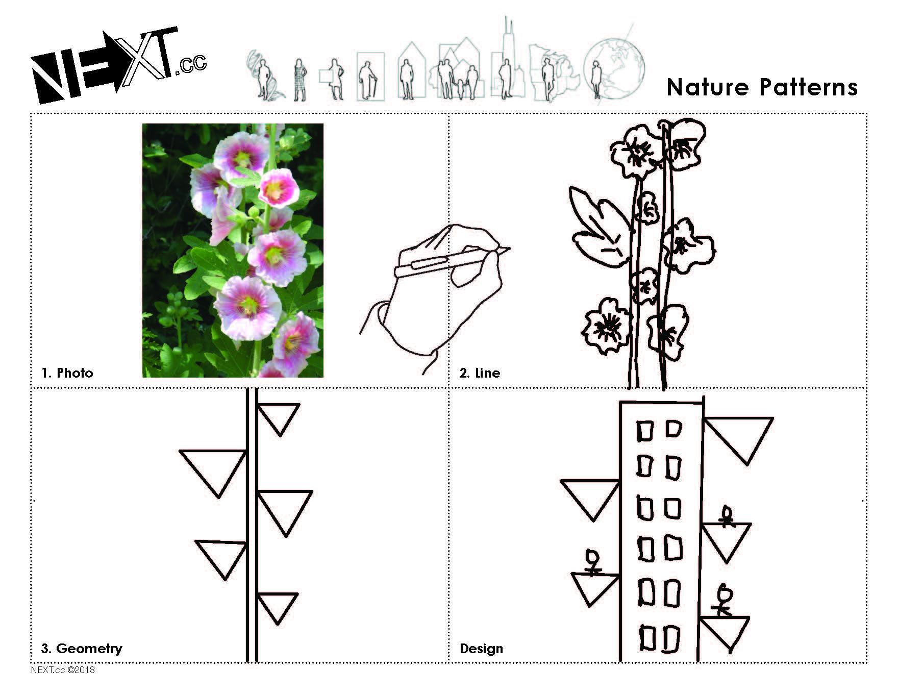 Images 1611016055 naturepatterns a4 yutongzhao 2
