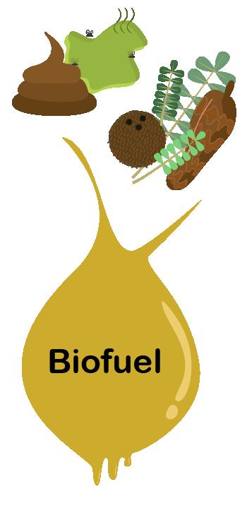 Description backgrounds 1569283393 biofuel intro 72dpi