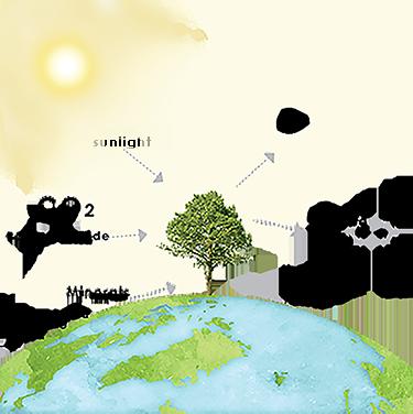 Description backgrounds 1600612660 sunlight introps